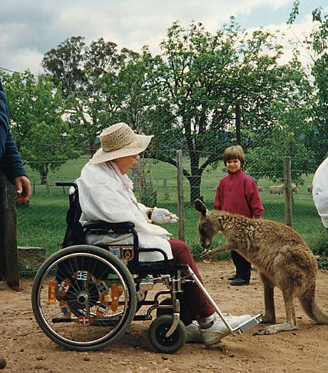 disabled wheelchair travel nan feeds 'roo